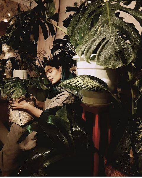 سانیا سالاری در گلخانه اش + عکس