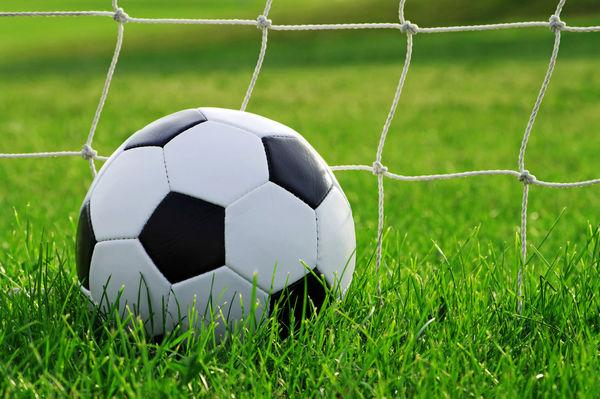 طالبی: منتظر برداشت محصول ۸ ساله از فوتبال ملی هستیم