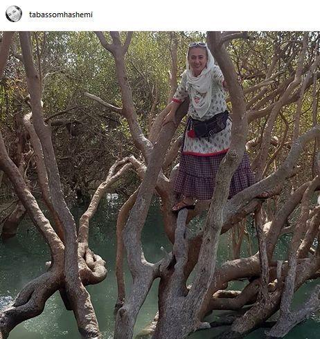 خانم بازیگر بالای درخت+عکس