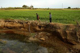 کشاورزان در روزهای که زمینهای برنج با مشکل جدی آب مواجه هستند تمام تلاش خود را جهت آبرسانی به زمینهای برنج انجام میدهند.