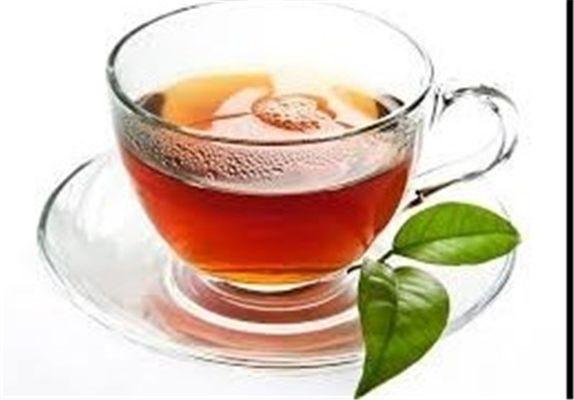 اگر زخم معده دارید، چای نخورید!