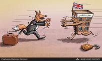 بازگشایی لانه روباه!/کاریکاتور