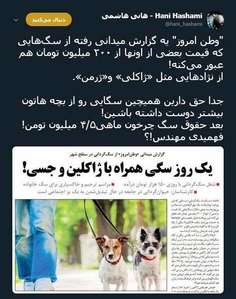 توئیتر::شغلی به نام «چرخاندن سگ» و دستمزد عجیبش