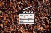فیلمهای کیمیایی و مهرجویی در موزه سینما