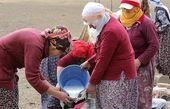 فعالیت روزانه زنان شیر دوش ترکیه