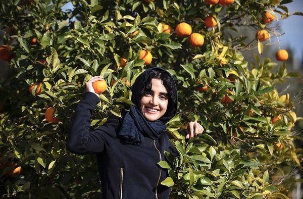 الهه حصاری در باغ پرتقال +عکس