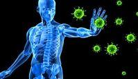 ۱۰ حقیقت جالب درباره سیستم ایمنی بدن انسان