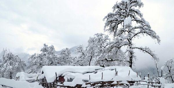 رهاسازی 104 خودرو درگیر در برف