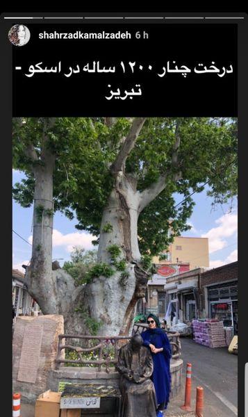 خانم بازیگر در کنار درخت کهنسال + عکس
