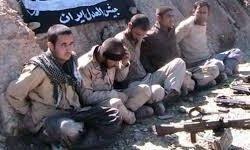 یکی از مرزبانان ایرانی به شهادت رسید
