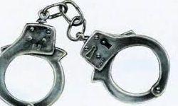 دستگیری ۴ نفر از متعرضین به کامیونها در نهاوند
