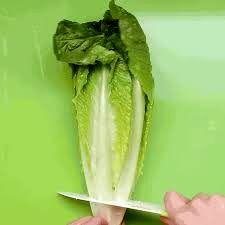 هرگز سبزی و کاهو را با چاقو نبرید!