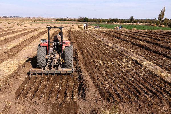 کاهش شدید منابع آبی بخش کشاورزی در قم