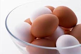 قیمت تخم مرغ پوسته قهوهای بستـه بندی و غیر بسته بندی در بازار+جدول