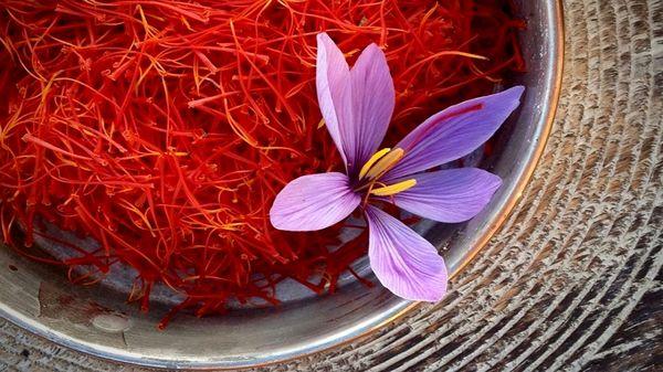 صادرات زعفران ایران به اتحادیه اروپا