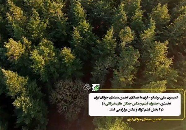"""اسامی برگزیدگان نمایشگاه عکس """"ثبت جهانی جنگلهای هیرکانی"""" اعلام شد"""