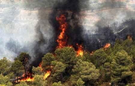 100 فقره آتش سوزی جنگلها در نوروز 97
