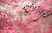 کلید حل مشکلات در کلام «حضرت علی علیهالسلام»+عکس