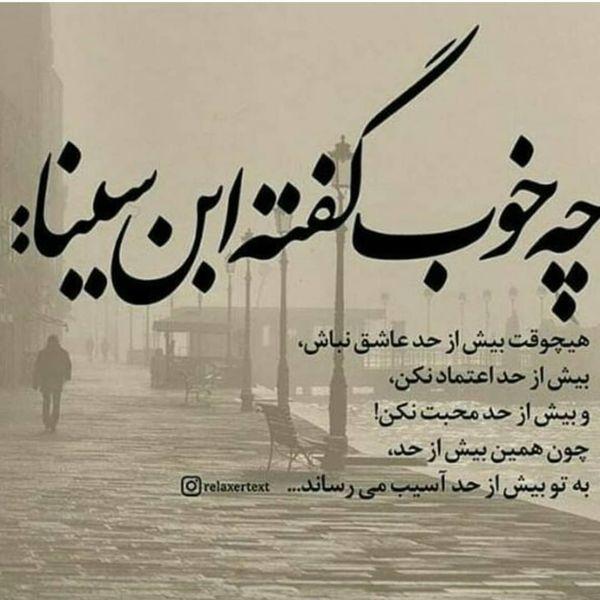 سخن گوهربار ابن سینا در صفحه مریم امیرجلالی