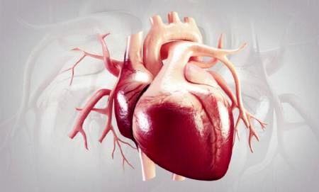 این عصاره راهی برای باز کردن رگهای قلب است