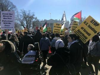 تظاهرات ضد جنگ با سوریه در شهرهای آمریکا